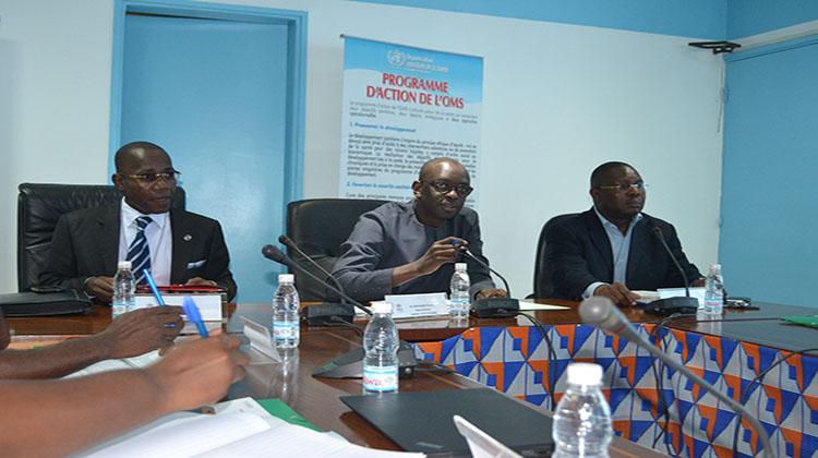 Atelier de préparation à la réponse aux urgences en Côte-d'Ivoire (Développement d'un plan de contingence de réfugiés libériens)